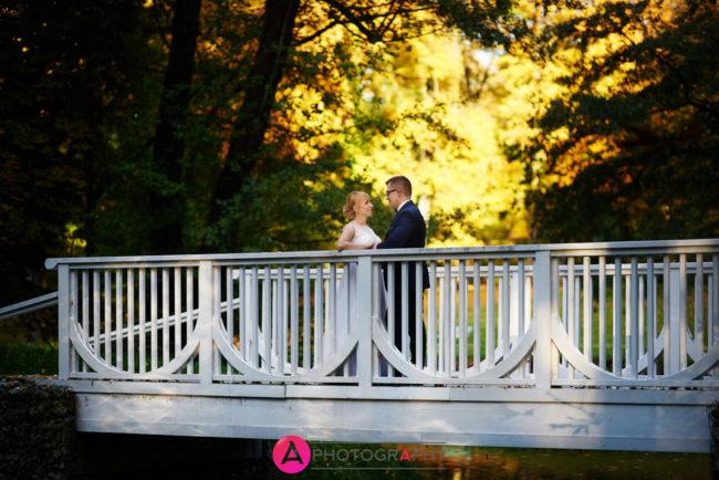 Romantyczny mostek w parku w Skierniewicach.