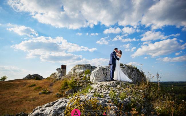 Sesja ślubna w Ogrodzieńcu.